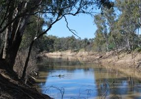 Goulburn_River_McCoy's_Bridge_002